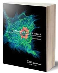 molecular probes handbook 11th edition