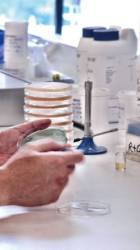 Listeriabig Sartorius Stedim Biotech Repligen Corporation