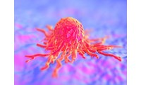 Bio-Rad Launches a Range of Anti-idiotypic Antibodies Targeting Pembrolizumab and Nivolumab