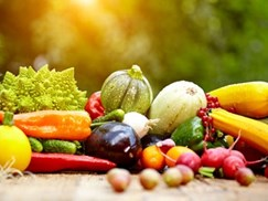 ensuring-the-integrity-of-the-worlds-food-supply--a-global-summit