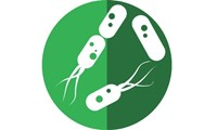 Webinar highlights - Not Just for Neurons - Electrical Signaling in Bacterial Biofilm Communities
