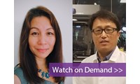 Increasing CRISPR editing efficiency with novel guide RNA methods: Your questions answered