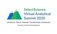 Virtual Analytical Summit 2020: Full meeting agenda