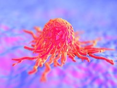 exosome-vesicle-research-provides-new-understanding-in-cancer-immunology-at-the-university-of-pittsburgh-cancer-institute
