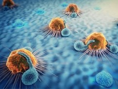 immuno-oncology-advances-from-tumor-microenvironments-and-car-t-cell-workflows-to-macrophage-generation