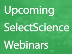 5-expert-webinars-coming-up-this-week