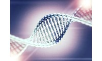 Genetic Study of Epilepsy Points to Potential New Therapies