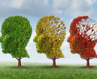 the-importance-of-early-diagnosis-in-alzheimers-disease