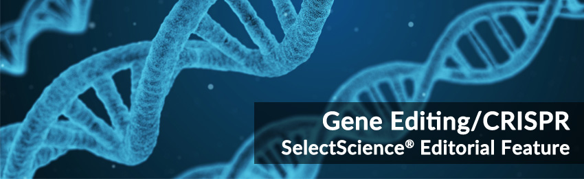 Gene editing and CRISPR special feature