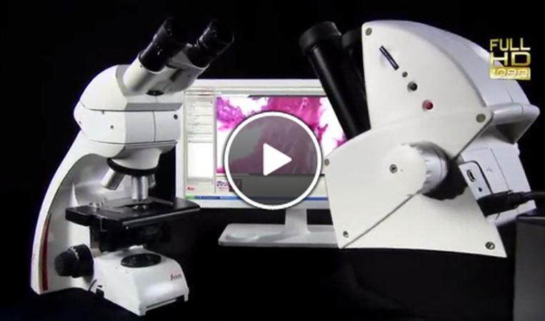 leicahd Microscope