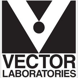 VECTASHIELD Mounting Medium by Vector Laboratories Inc. product image