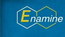 REAL database by Enamine product image