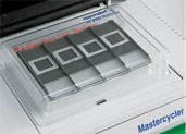 in situ Adapter by Eppendorf product image