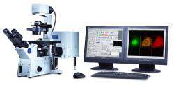 DEACTIVATE: Olympus FV1000 Confocal Microscope by Olympus Life Science thumbnail