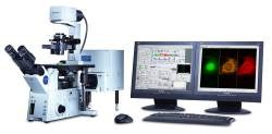 DEACTIVATE: Olympus FV1000 Confocal Microscope by Olympus Life Science product image
