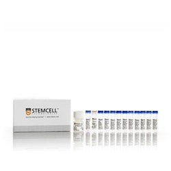 hPSC Genetic Analysis Kit by STEMCELL Technologies Inc. product image