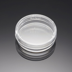 BD BioCoat Poly-D-Lysine 35 mm Culture Dishes by BD Biosciences Discovery Labware thumbnail