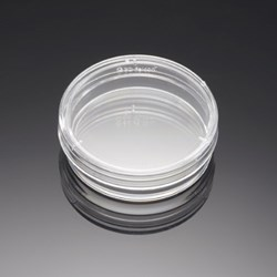 BD BioCoat Poly-D-Lysine 35 mm Culture Dishes by BD Biosciences Discovery Labware product image