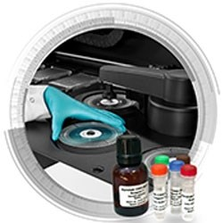 Gyrolab CHO-HCP E3G Kit for microfluidic immunoassays by Gyros Protein Technologies product image