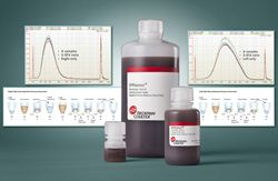 SPRIselect Reagent Kit for DNA Size Selection by Beckman Coulter thumbnail