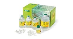 Plasmid DNA Isolation and Purification Kits by Bio-Rad product image