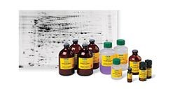 Premixed Buffers and Buffer Reagents by Bio-Rad product image