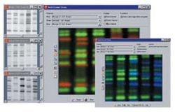 Quantity One® 1-D analysis Software by Bio-Rad product image