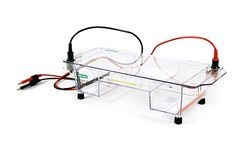 ReadySub-Cell GT Electrophoresis Cell by Bio-Rad product image