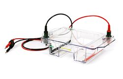 Wide Mini-Sub Cell GT Electrophoresis Cell by Bio-Rad thumbnail