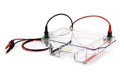 Wide Mini-Sub Cell GT Electrophoresis Cell by Bio-Rad product image