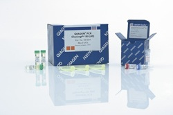 100 bp GelPilot Plus Ladder by QIAGEN thumbnail