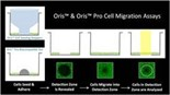 Oris™ Cell Migration and Invasion Assays