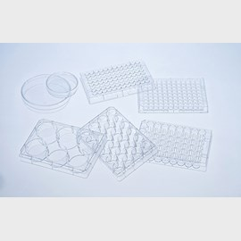 CELLSTAR Cell Culture Vessels with Cell-Repellent Surface by Greiner Bio-One GmbH product image
