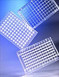 Transwell Permeable Growth Supports (various sizes / coatings) by Corning Life Sciences product image
