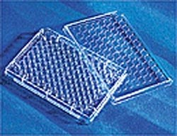 Corning® 96 Well Clear Round Bottom Ultra Low Attachment Microplate, Individually Wrapped, with Lid, Sterile by Corning Life Sciences product image