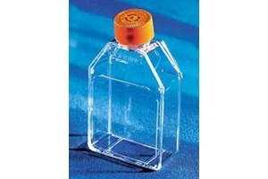 Corning® 25cm² Rectangular Canted Neck Cell Culture Flask with Vent Cap