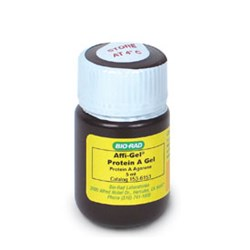 Affi-Gel Protein A Support #1536153 by Bio-Rad product image