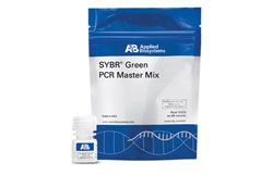 SYBR® Green PCR Master Mix by Thermo Fisher Scientific thumbnail