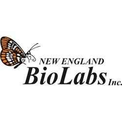 Restriction Enzymes by New England Biolabs Inc. product image
