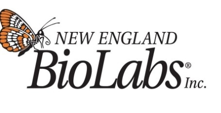 EpiMark® Hot Start Taq DNA Polymerase by New England Biolabs Inc. thumbnail
