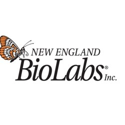 EpiMark® Hot Start Taq DNA Polymerase by New England Biolabs Inc. product image