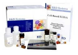 Cell-based ELISA by R&D Systems, Inc. product image