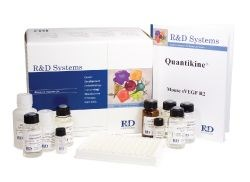 Quantikine® Colorimetric Sandwich ELISA kits by R&D Systems, Inc. product image
