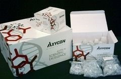 AxyPrep™ DNA Gel Extraction Kit