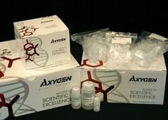 AxyPrep™ PCR Cleanup Kit by Axygen Scientific, Inc. product image