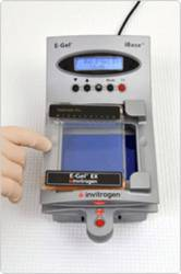 E-Gel® Pre-cast Agarose Electrophoresis System by Thermo Fisher Scientific Invitrogen thumbnail