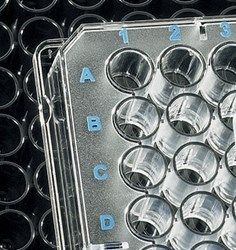 BRANDplates Immunology Microplates - immunoGrade, hydroGrade™ and lipoGrade™ by BrandTech® Scientific, Inc. product image