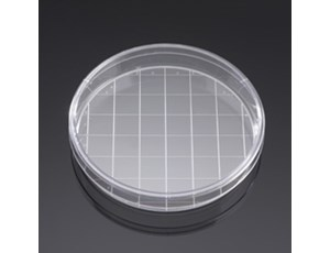 BD BioCoat Poly-D-Lysine 150 mm Gridded Culture Dishes