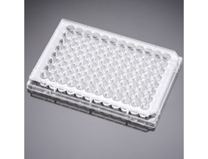 BD Falcon 96-well Flat-bottom Microplates nonsterile