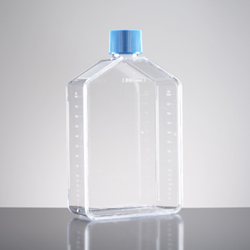 BD Biocoat Collagen I 175 cm2 Flask with vented cap by BD Biosciences Discovery Labware thumbnail